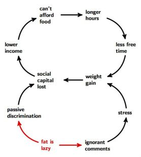 The systemic nature of obesity, and a few of its socio